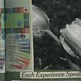 Each_experience_speaks